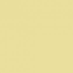 White Lead Dark (172)