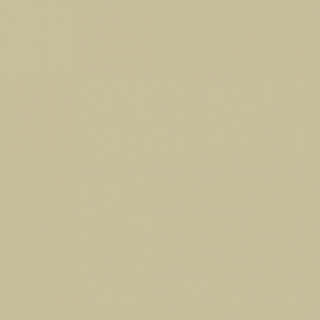 Stone Dark Cool (67) • Peinture • LITTLE GREENE • AZURA