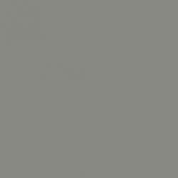 Grey Teal (226)