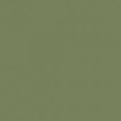 Sage Green (80)