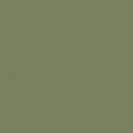 Sage Green (80) • Peinture • LITTLE GREENE • AZURA