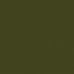 Olive Colour (72)