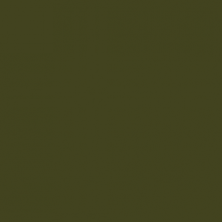 Olive Colour (72) • Paint • LITTLE GREENE • AZURA