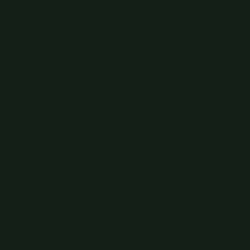 Obsidian Green (216)