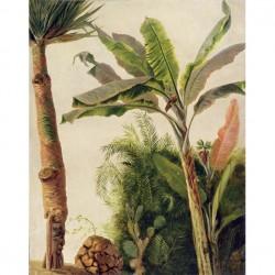 Panneau Banana Tree • Papier Peint • AU FIL DES COULEURS • AZURA