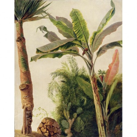 Banana Tree Panel • Wallpaper • AU FIL DES COULEURS • AZURA