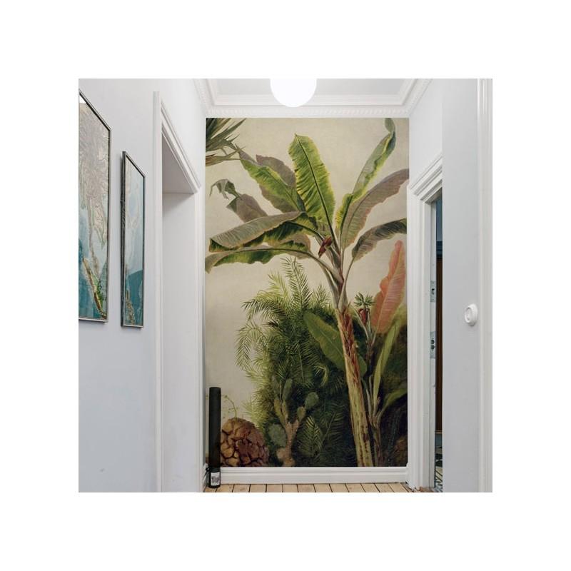 banana tree papier peint au fil des couleurs. Black Bedroom Furniture Sets. Home Design Ideas