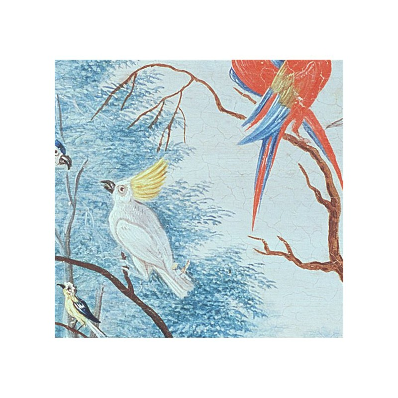 tropical birds wallpaper au fil des couleurs. Black Bedroom Furniture Sets. Home Design Ideas