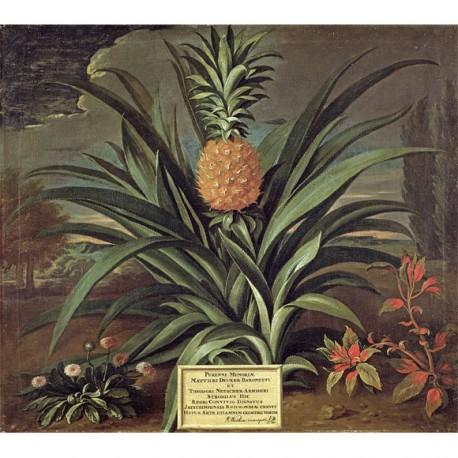 Panneau Pineapple • Papier Peint • AU FIL DES COULEURS • AZURA