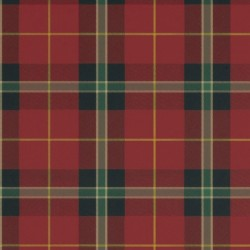 Winslow Plaid