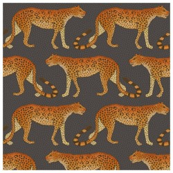 Leopard Walk 109/2008 • Papier Peint • COLE AND SON • AZURA
