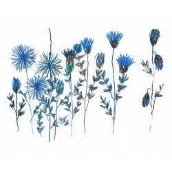 Panneau Bleuets • Papier Peint • AU FIL DES COULEURS • AZURA