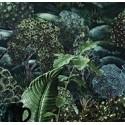 Botanical - botanica