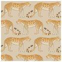 Leopard Walk 109/2010